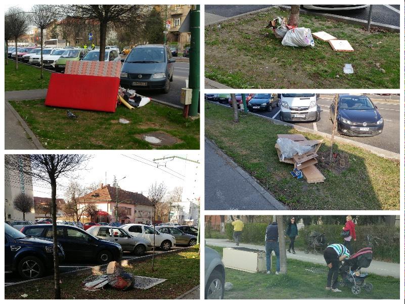 Curatenea de primavara 2017 - Timisoara
